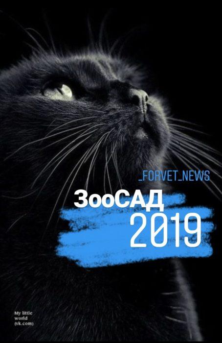 ЗооСАД-2019