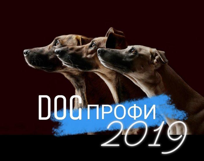 Dog-профи-2019