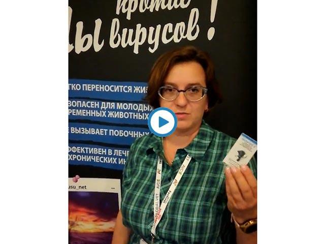Сочинский ветеринарный фестиваль 2020г